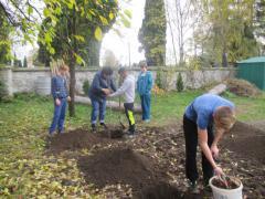 Výsadba ovocných stromov